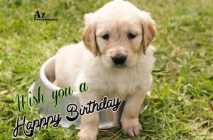 With Dog Birthday Wishes