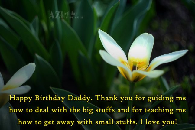 Happy Birthday Daddy Thank you for guiding me how… - AZBirthdayWishes.com