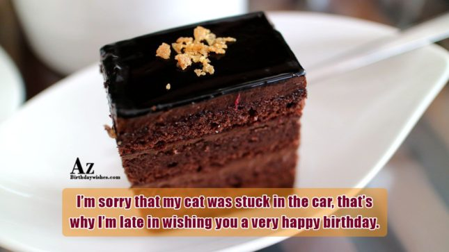 I'm sorry that my cat was stuck in the car… - AZBirthdayWishes.com