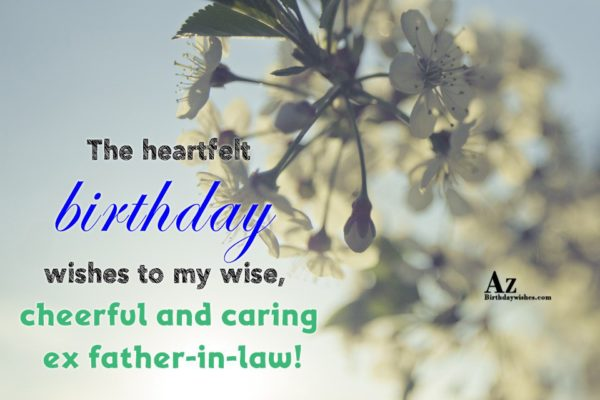 The heartfelt birthday wishes to my wise cheerful and… - AZBirthdayWishes.com