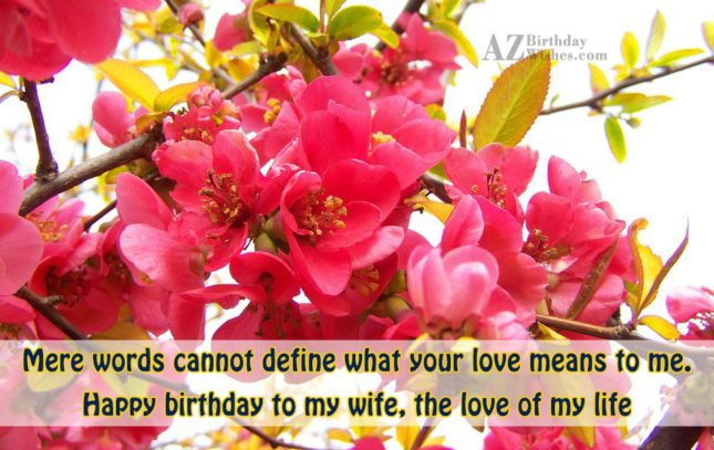Mere words cannot define what your love… - AZBirthdayWishes.com