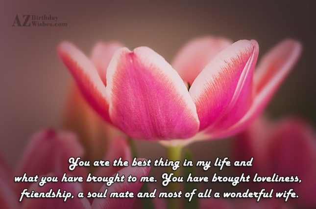 You are the best thing in my… - AZBirthdayWishes.com