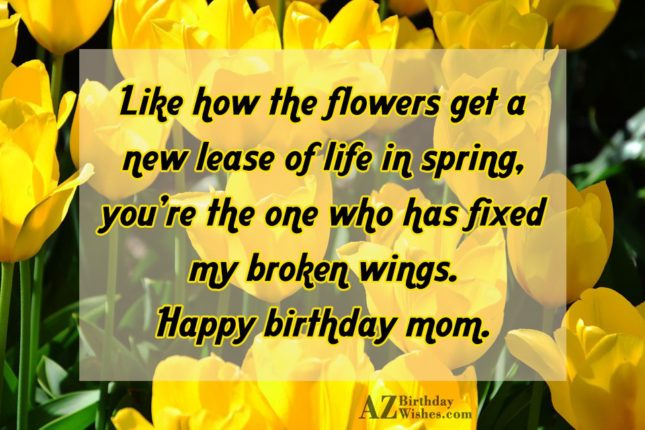 Like how the flowers get a new… - AZBirthdayWishes.com