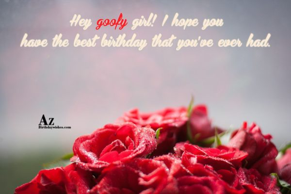 Hey goofy girl I hope you have the best… - AZBirthdayWishes.com