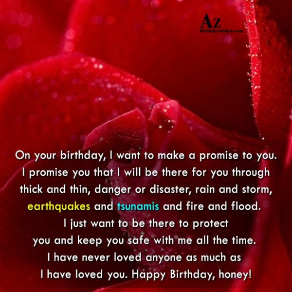 On your birthday I want to make a promise… - AZBirthdayWishes.com