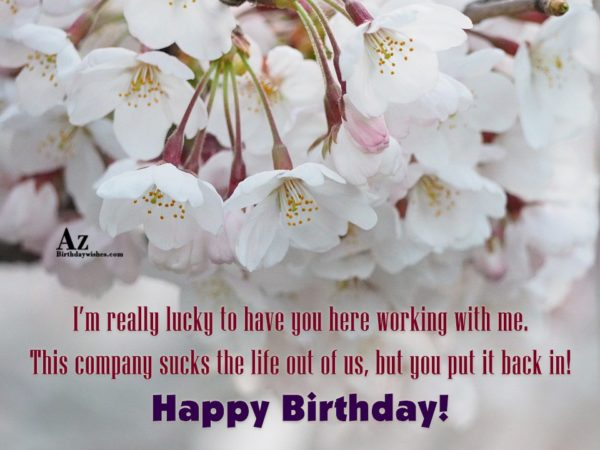 I m really lucky to have you here working… - AZBirthdayWishes.com