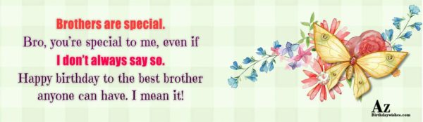 Brothers are special Bro you re special to me… - AZBirthdayWishes.com