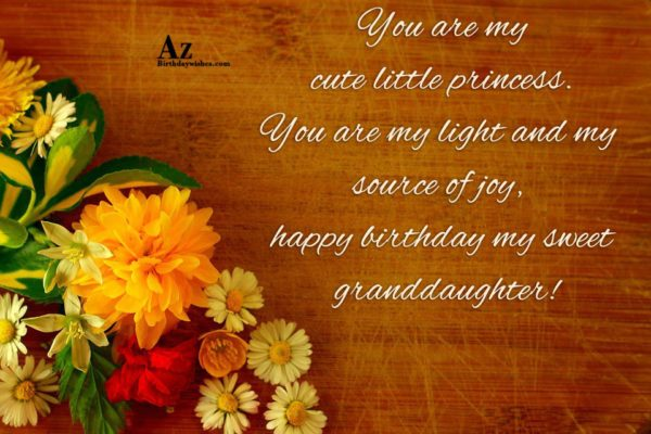 You are my cute little princess You are my… - AZBirthdayWishes.com
