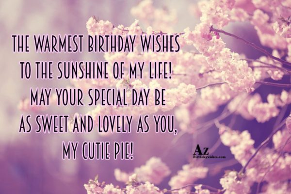 The warmest birthday wishes to the sunshine of my… - AZBirthdayWishes.com