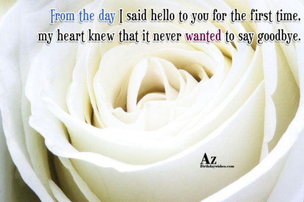 From the day I said hello to you for… - AZBirthdayWishes.com
