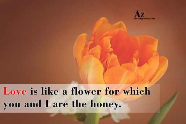 Love is like a flower for which you and… - AZBirthdayWishes.com