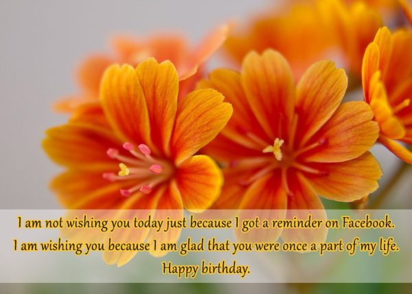 I am not wishing you today just because I… - AZBirthdayWishes.com