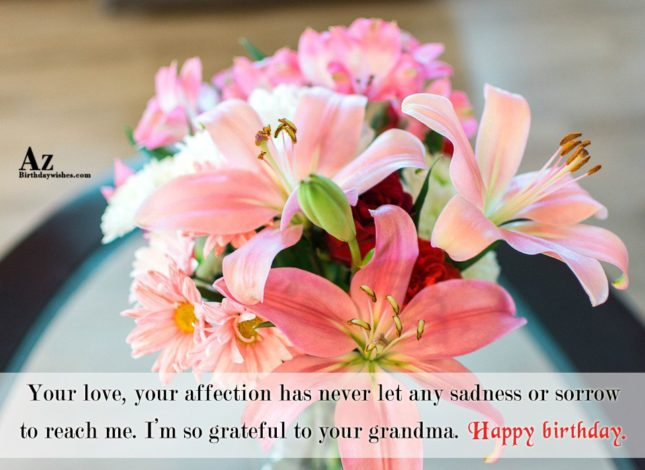 Your love your affection has never let any sadness… - AZBirthdayWishes.com
