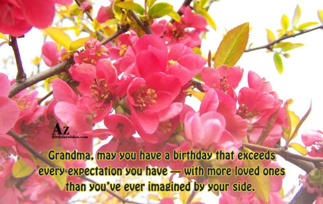 azbirthdaywishes-5225