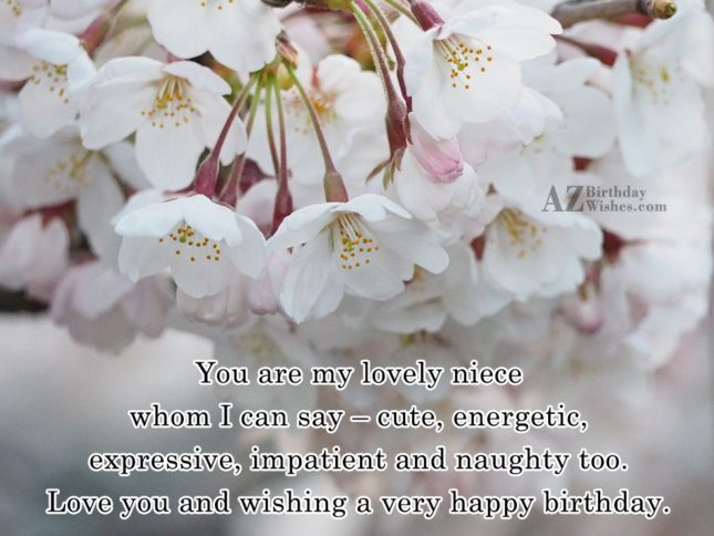You are my lovely niece whom I… - AZBirthdayWishes.com