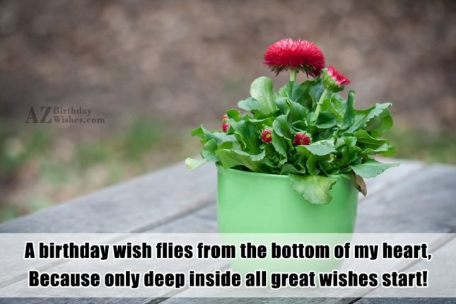 A birthday wish flies from the bottom… - AZBirthdayWishes.com
