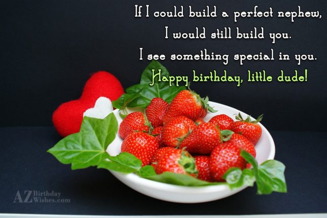 If I could build a perfect nephew,I… - AZBirthdayWishes.com