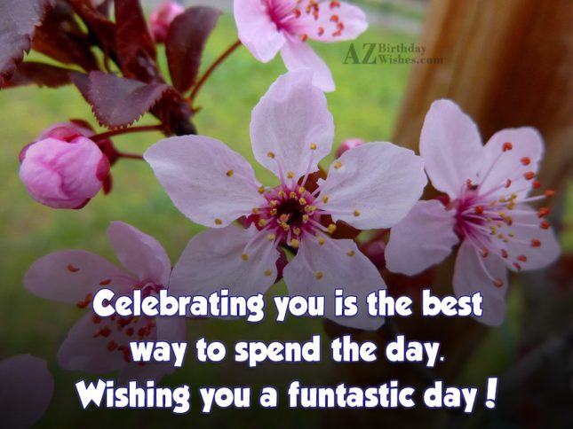 Celebrating you is the best way to… - AZBirthdayWishes.com