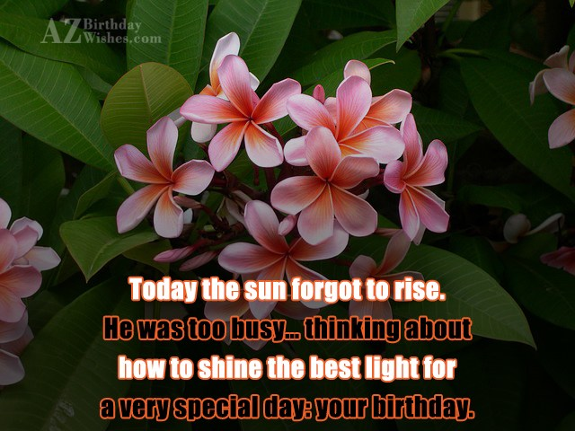 Today the sun forgot to rise. He… - AZBirthdayWishes.com
