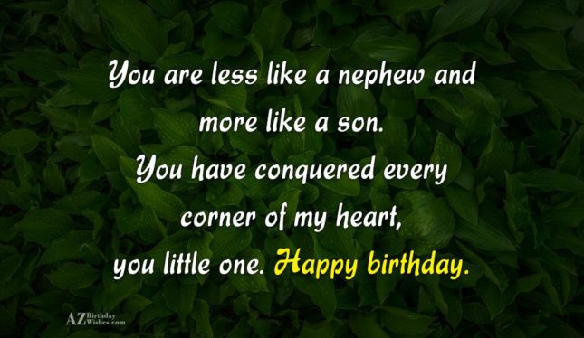 You are less like a nephew and… - AZBirthdayWishes.com