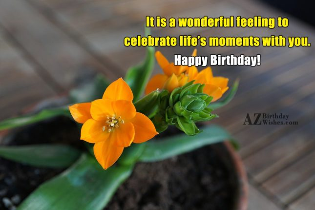 It is a wonderful feeling to celebrate life's moments with you. Happy Birthday! - AZBirthdayWishes.com