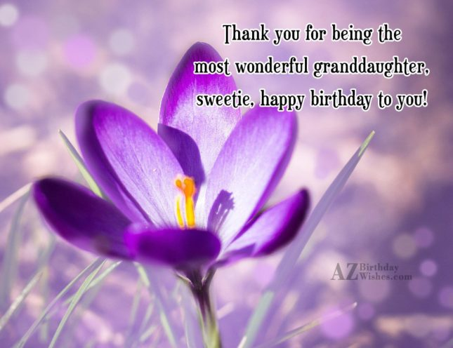 Thank you for being the most wonderful granddaughter, sweetie, happy birthday to you! - AZBirthdayWishes.com
