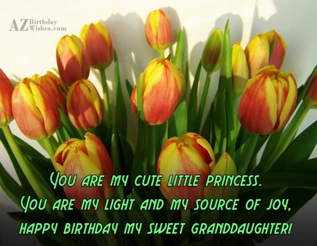 You are my cute little princess. You are my light and my source of joy, happy birthday my sweet granddaughter! - AZBirthdayWishes.com