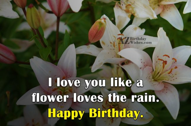 I love you like a flower loves the rain. Happy Birthday. - AZBirthdayWishes.com