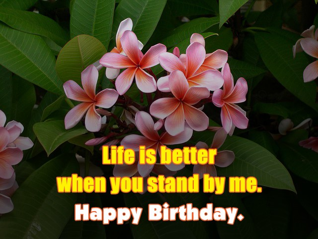 Life is better when you stand by me. Happy Birthday. - AZBirthdayWishes.com