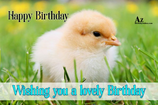Wishing you a lovely birthday - AZBirthdayWishes.com