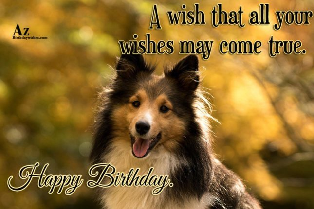 A  wish that all your wishes may come true - AZBirthdayWishes.com