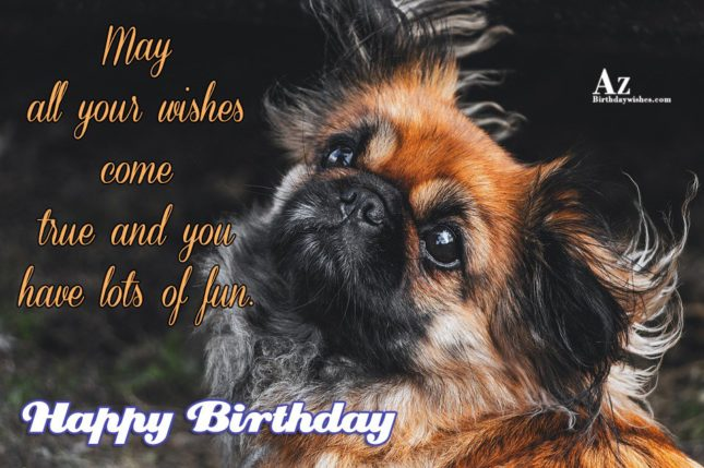 May all your wishes come true and you have lots of fun - AZBirthdayWishes.com