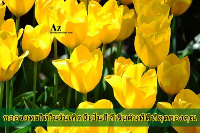 azbirthdaywishes-7285