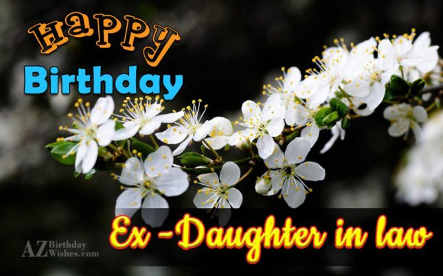 I wish you a very lovely happy birthday my ex daughter in law - AZBirthdayWishes.com