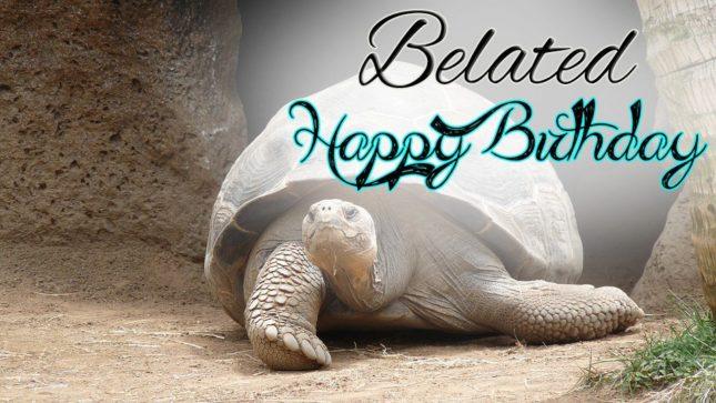 Belated birthday wish with turtle… - AZBirthdayWishes.com