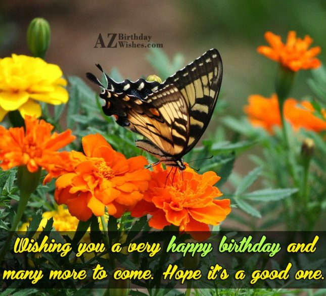 Birthday greeting with a butterfly picture… - AZBirthdayWishes.com
