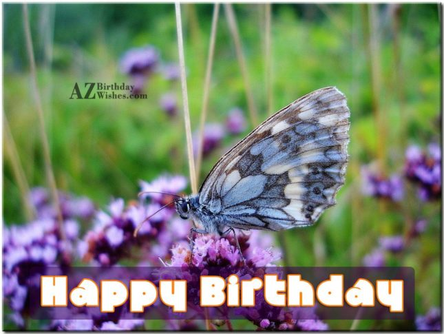 Happy birthday with butterfly background… - AZBirthdayWishes.com