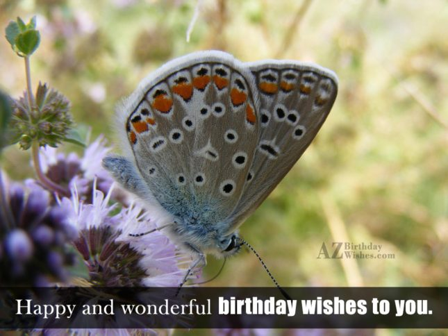 Happy and wonderful birthday wishes with butterfly… - AZBirthdayWishes.com