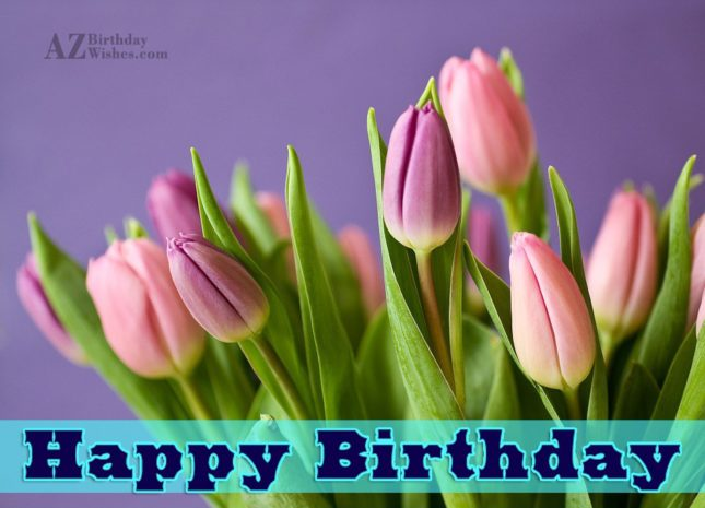 Birthday wishes with Pink tulips in the background… - AZBirthdayWishes.com