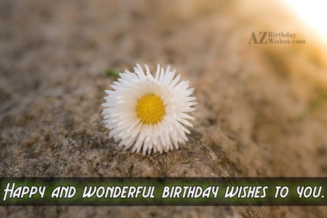 Happy wishes to you on your birthday… - AZBirthdayWishes.com