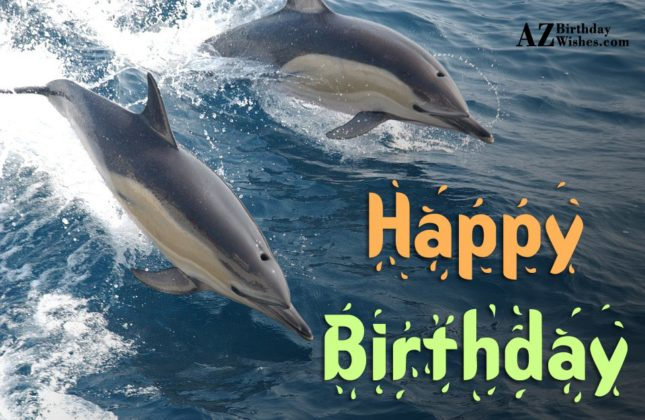 Happy Birthday on two dolphins swimming… - AZBirthdayWishes.com