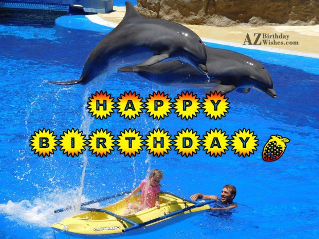 Happy birthday on Dolphins performing… - AZBirthdayWishes.com