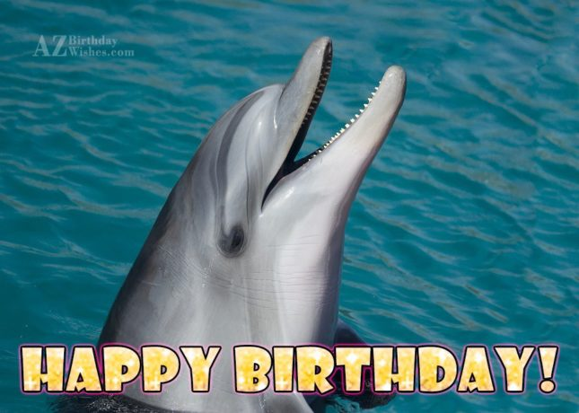 Happy birthday on smiling Dolphin… - AZBirthdayWishes.com