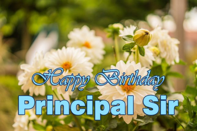 Birthday greetings to Principal Sir… - AZBirthdayWishes.com