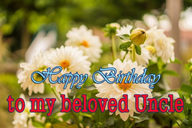 Happy birthday to my beloved uncle… - AZBirthdayWishes.com