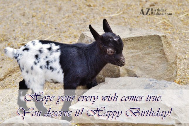 Hope your every smile wish comes true you deserve it - AZBirthdayWishes.com