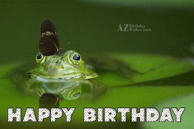 Happy birthday with butterfly on frog's head background… - AZBirthdayWishes.com