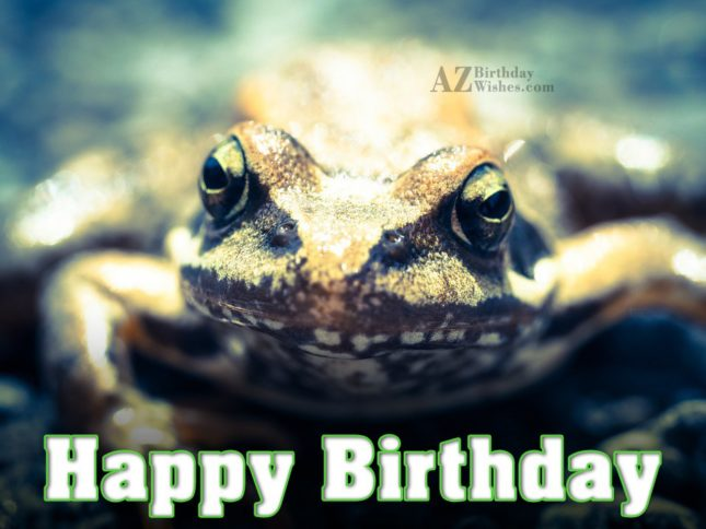 Happy birthday wish with frog background… - AZBirthdayWishes.com