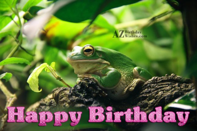 Happy birthday greeting with frog background… - AZBirthdayWishes.com