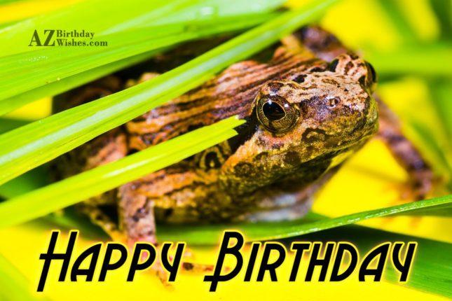 Happy birthday with frog background - AZBirthdayWishes.com